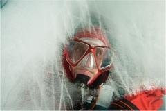 Grönland Ortwin Khan Qualle